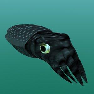 lwo cuttlefish