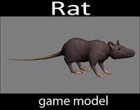 3d rat -