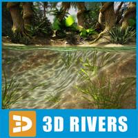 free evolution scene 3d model