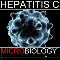 hepatitis c 3d model