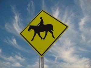 horse crossing street sign 3d model