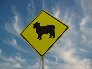 sheep crossing street sign 3d max