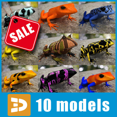 3d exotic frogs model