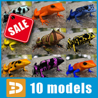 Exotic frogs collection by 3DRivers
