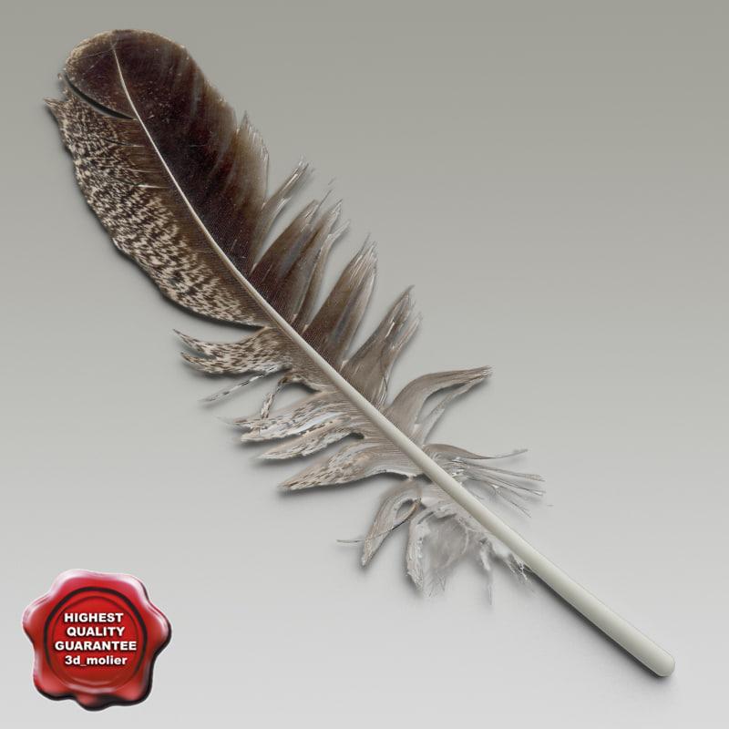 bird feather v1 3d model