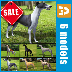 greyhound dogs 3d 3ds