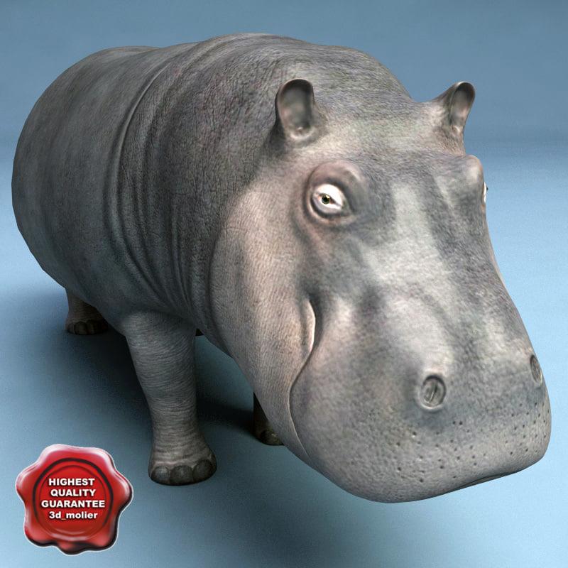 3d model hippo modelled
