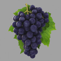 grape fruit 3d model