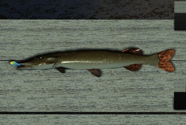 pike fishing pole max