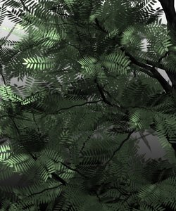 3d model honey locust trees