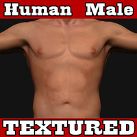 athletic human male 3d model