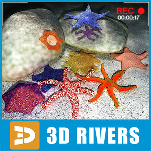set starfish 3ds