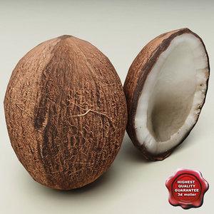 3d coconut nut model