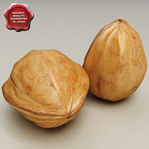 3d walnut modelled model