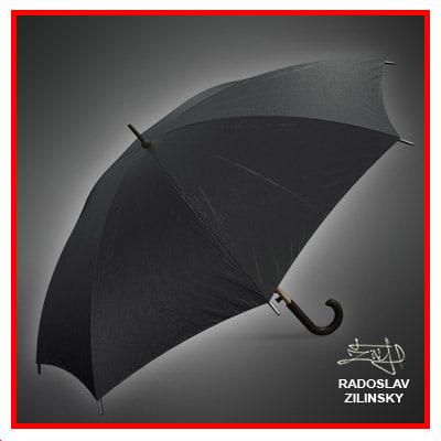 umbrella rain 3d model