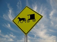 Buggy Crossing Road Sign