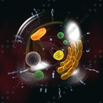 biological cell 3d model