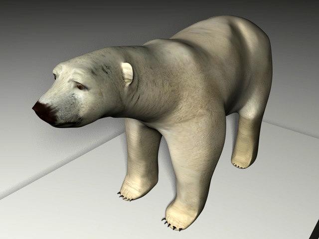 white bear 3ds