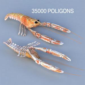 max norway lobster