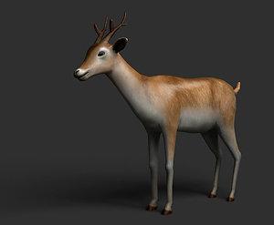max deer
