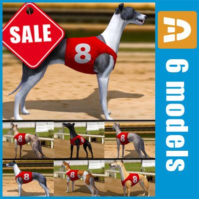 3d racing greyhounds number jackets