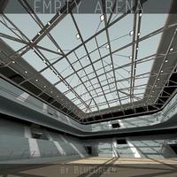3d Empty Arena