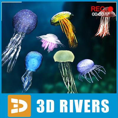3d set jellyfish