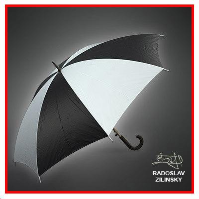 3d umbrella rain
