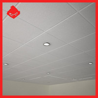 Suspended Ceiling & Lights