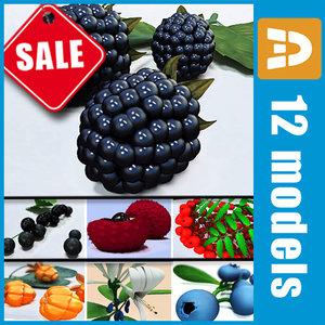 3d model common berries