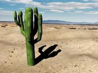 cactus 3ds free