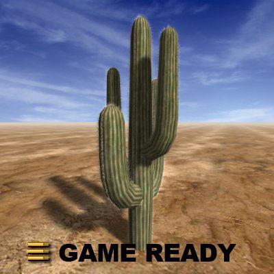 large saguaro cactus 3ds
