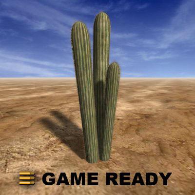 maya organ pipe cactus