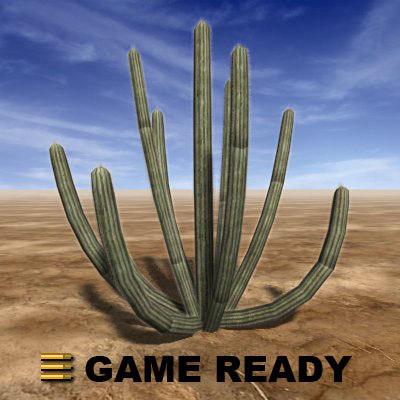 organ pipe cactus 3d max