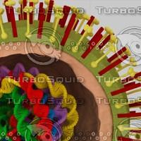 flu virus H1N1 model