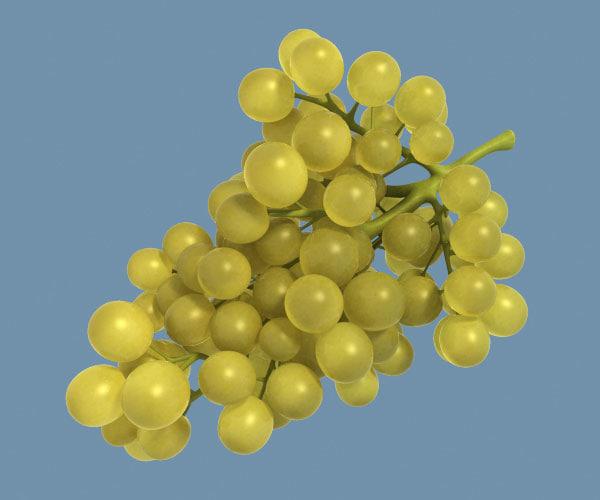 3d core grapes model