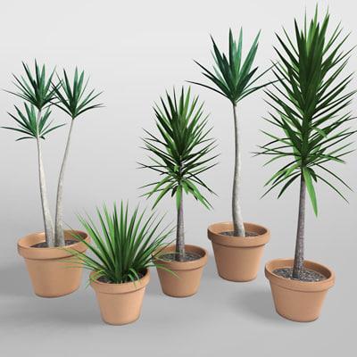 3d realistic plants model