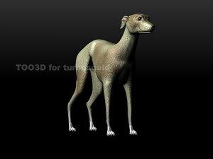 3d model hound greyhound