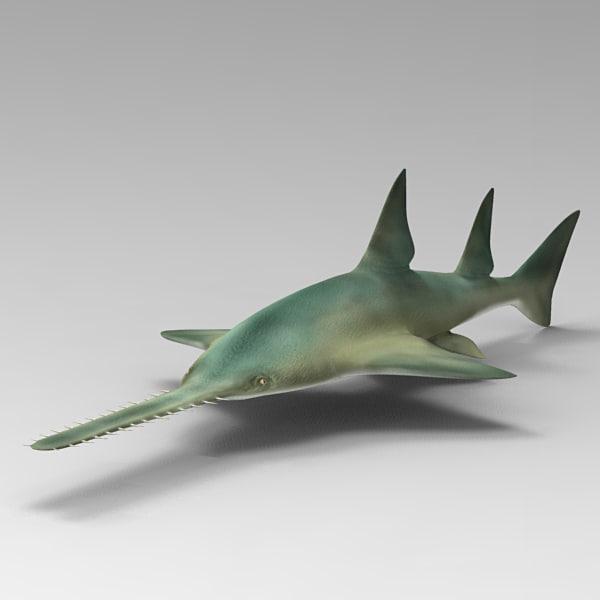 3d model sawfish fish