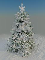3d model fir snow
