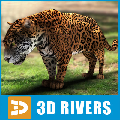 3ds max wild cats feline