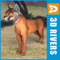obj caracal cats