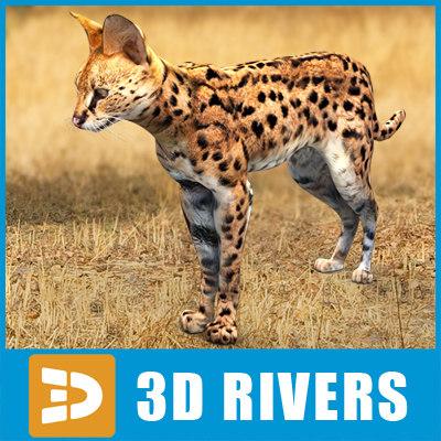 3d model serval cats