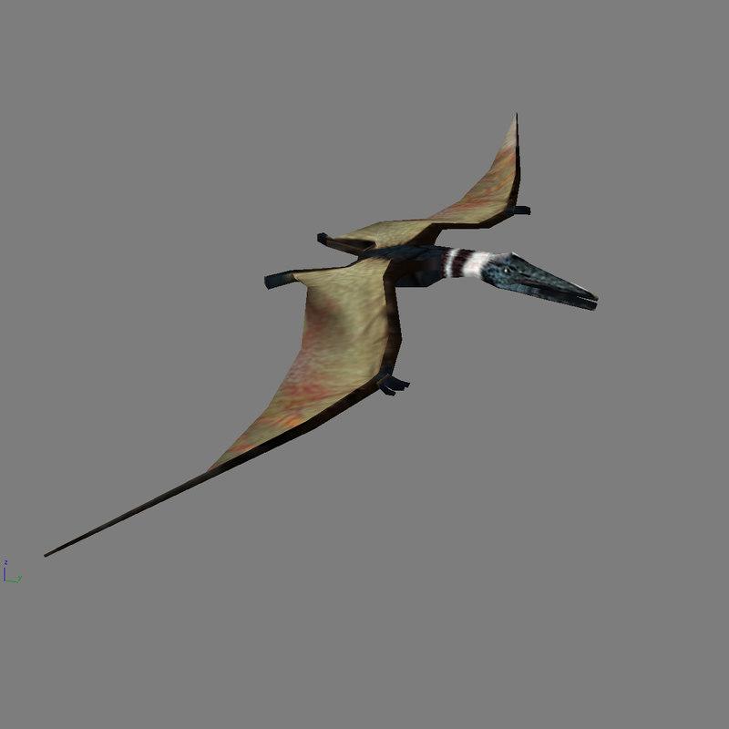 3d model of pterodactylus -