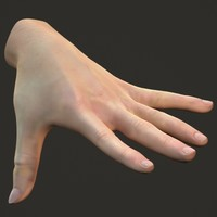 3d hand human materials model