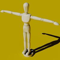 Artist Pose Figure Model