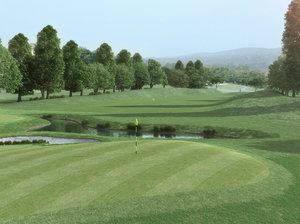 photorealistic proxy grass ground 3d model