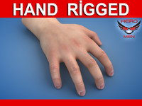 Realistic male hand model