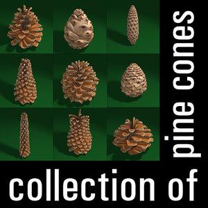 3d model pine cones