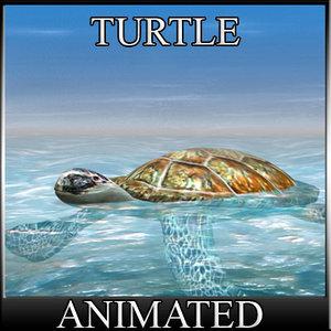 obj water turtle